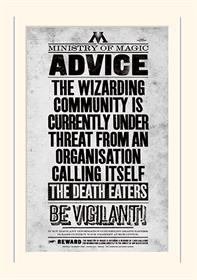 HARRY POTTER - BE VIGILANT - MOUNTED 30 X 40CM PRINTS