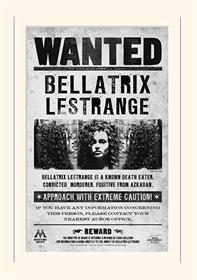 Harry Potter - Bellatrix Wanted - Mounted 30 X 40cm Prints