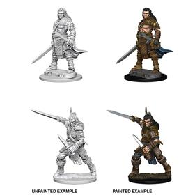 PATHFINDER BATTLES DEEP CUTS. HUMAN MALE FIGHTER